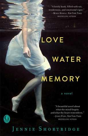 Love-Water-Memory